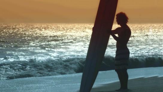 Surfer, Dude (2008) Image