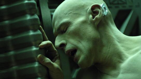 Dante 01 (2008) Image