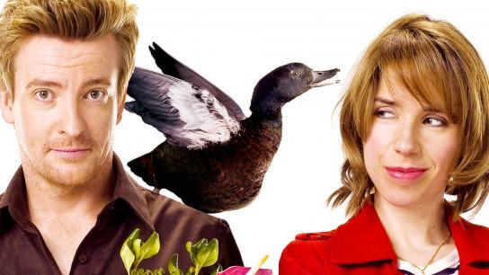 Love Birds (2011) Image