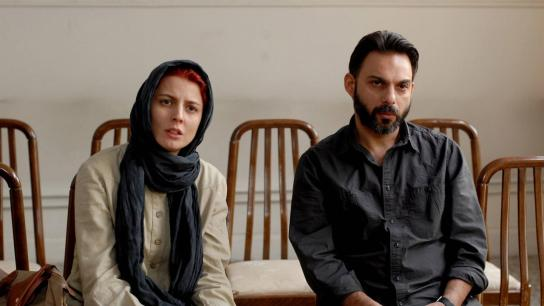 A Separation (2011) Image