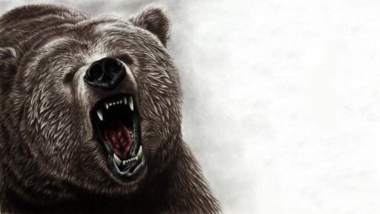 Into the Grizzly Maze (2015) Image