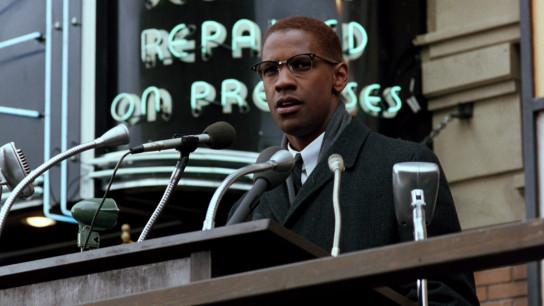 Malcolm X (1992) Image