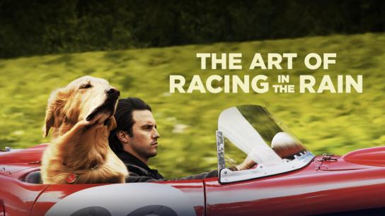 The Art of Racing in the Rain (2019) Image