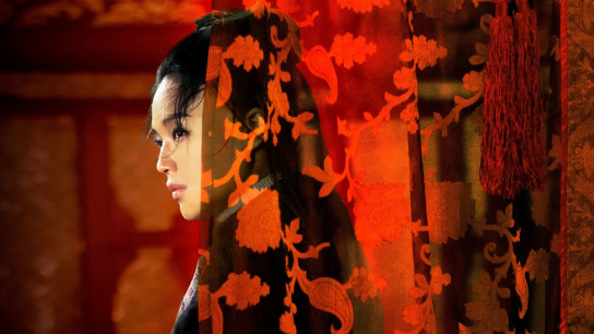 The Assassin (2015) Image