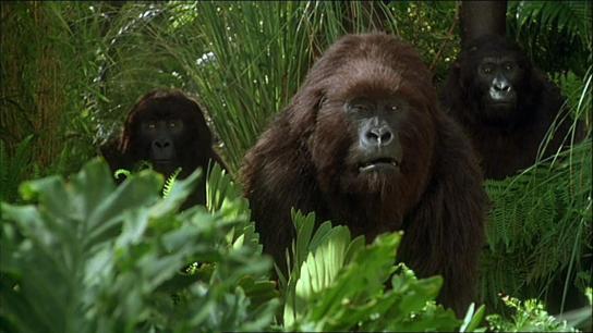 Congo (1995) Image