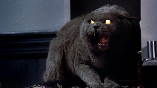 Pet Sematary (1989) Image