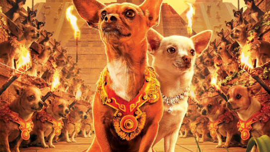 Beverly Hills Chihuahua (2008) Image