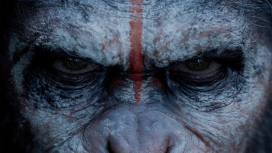 Dawn of the Planet of the Apes (2014) Image