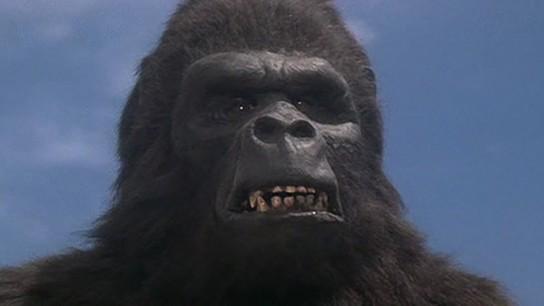 King Kong Lives (1986) Image