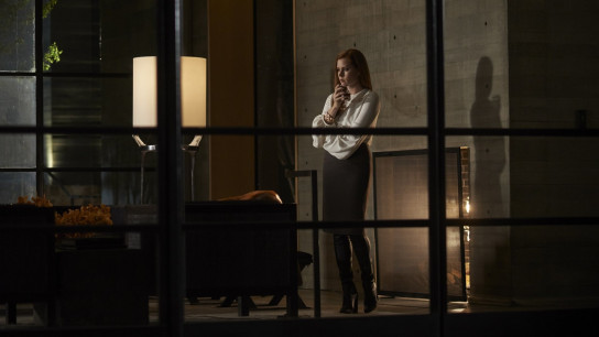Nocturnal Animals (2016) Image