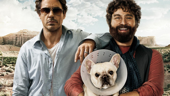 Due Date (2010) Image