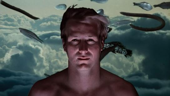 Altered States (1980) Image