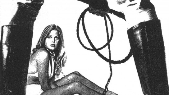 Pets (1974) Image