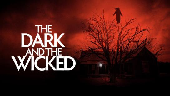 The Dark and the Wicked (2020) Image