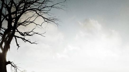 Conviction (2010) Image