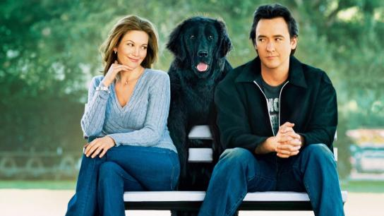 Must Love Dogs (2005) Image