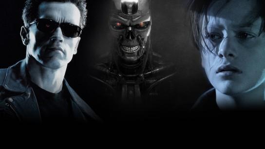 Terminator 2: Judgment Day (1991) Image
