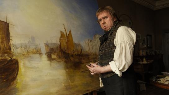 Mr. Turner (2014) Image