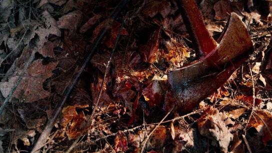 Hatchet II (2010) Image
