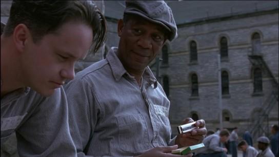 The Shawshank Redemption (1994) Image