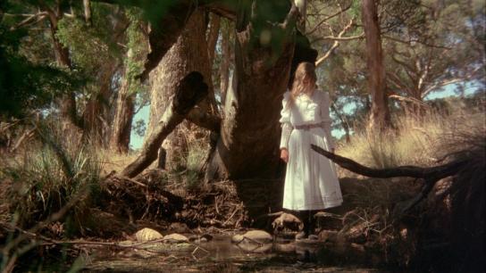 Picnic at Hanging Rock (1975) Image