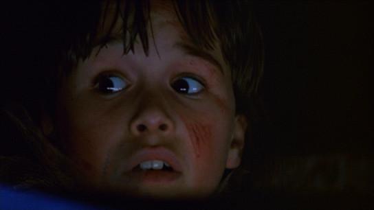 Halloween 5: The Revenge of Michael Myers (1989) Image