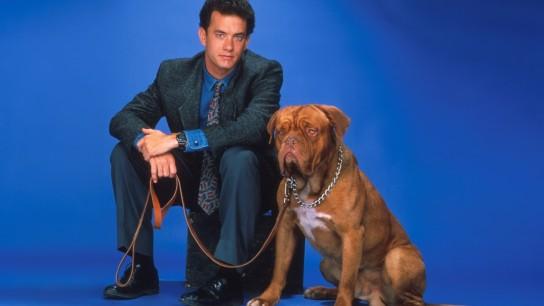 Turner & Hooch (1989) Image