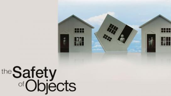 The Safety of Objects (2003) Image