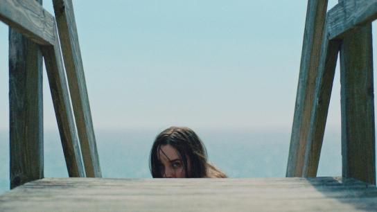 The Beach House (2020) Image