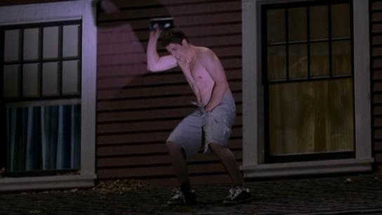American Pie: Revealed (2003) Image