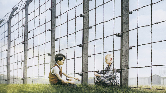The Boy in the Striped Pyjamas (2008) Image
