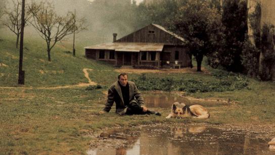 Nostalgia (1983) Image