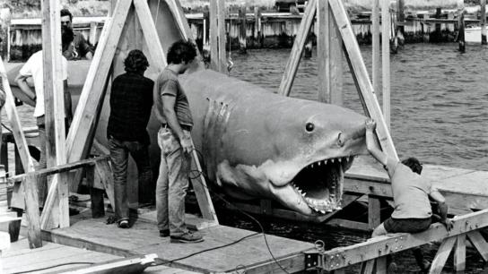 The Shark Is Still Working: The Impact & Legacy of Jaws (2007) Image
