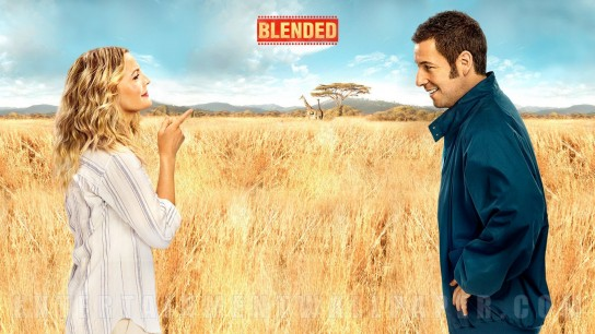 Blended (2014) Image