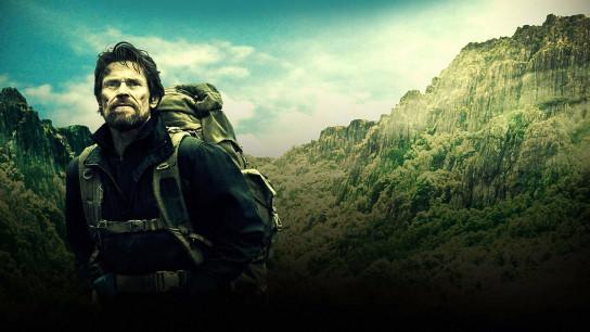 The Hunter (2011) Image