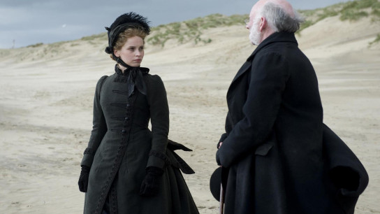 The Invisible Woman (2013) Image