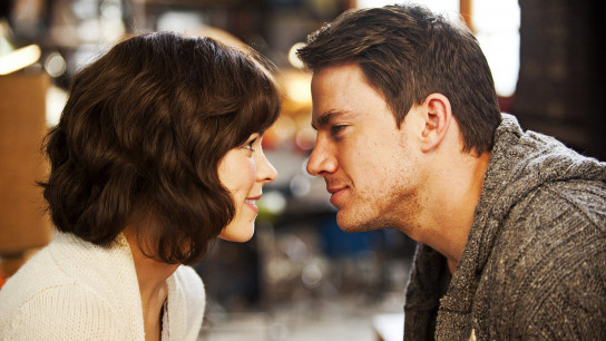 The Vow (2012) Image