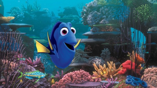 Finding Dory (2016) Image