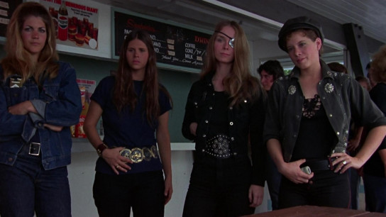 Switchblade Sisters (1975) Image