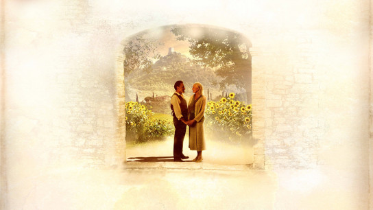 Letters to Juliet (2010) Image
