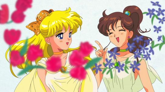 Sailor Moon S the Movie: Hearts in Ice (2000) Image