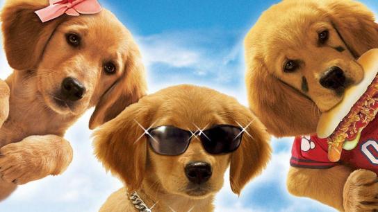 Air Buddies (2006) Image