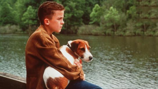 My Dog Skip (2000) Image
