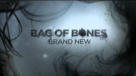 Bag of Bones (2011) Image
