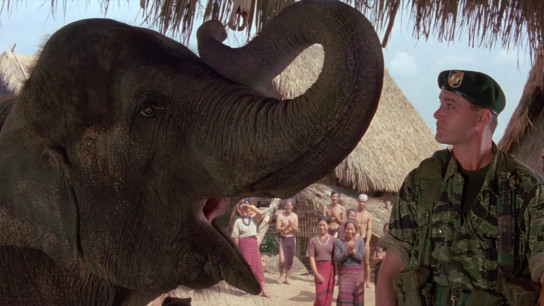 Operation Dumbo Drop (1995) Image