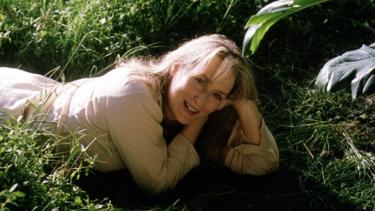 Adaptation. (2002) Image