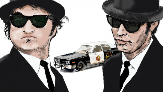 The Blues Brothers (1980) Image