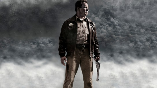 The Last Stand (2013) Image