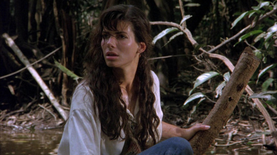 Fire on the Amazon (1993) Image