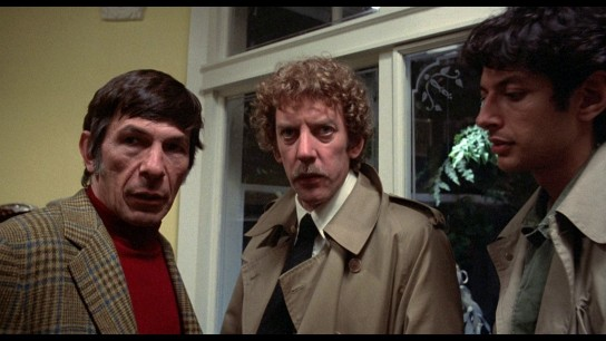 Invasion of the Body Snatchers (1978) Image